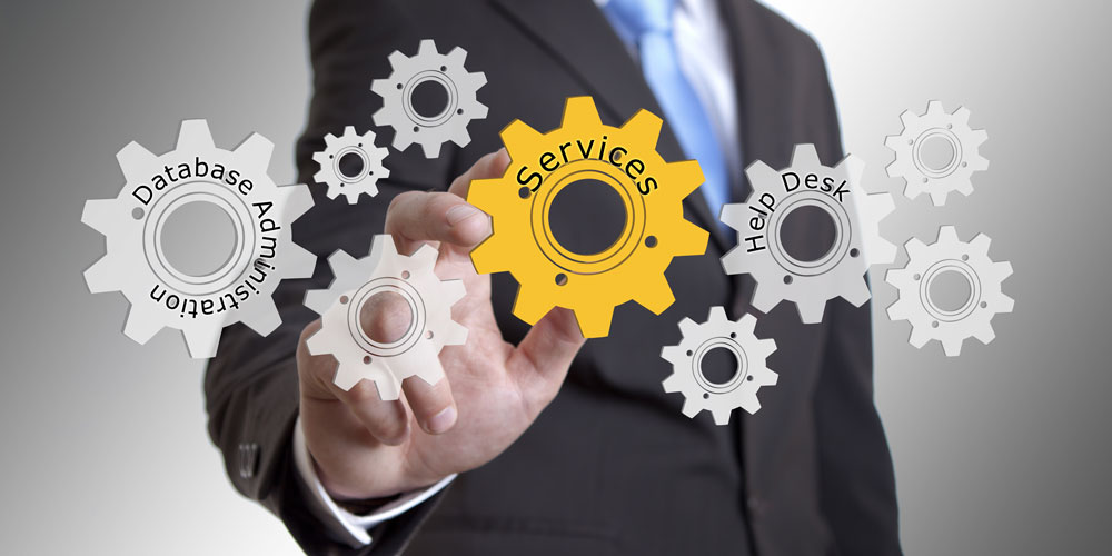Professional Services Diligent Consulting